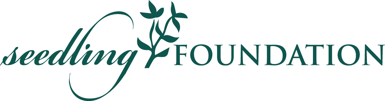 The seedling Foundation
